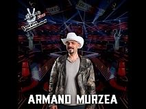Armand Murzea-Just a perfect day(Lou Reed)-Vocea Romaniei 2015-LIVE 1 - Ed. 11-Sezon5